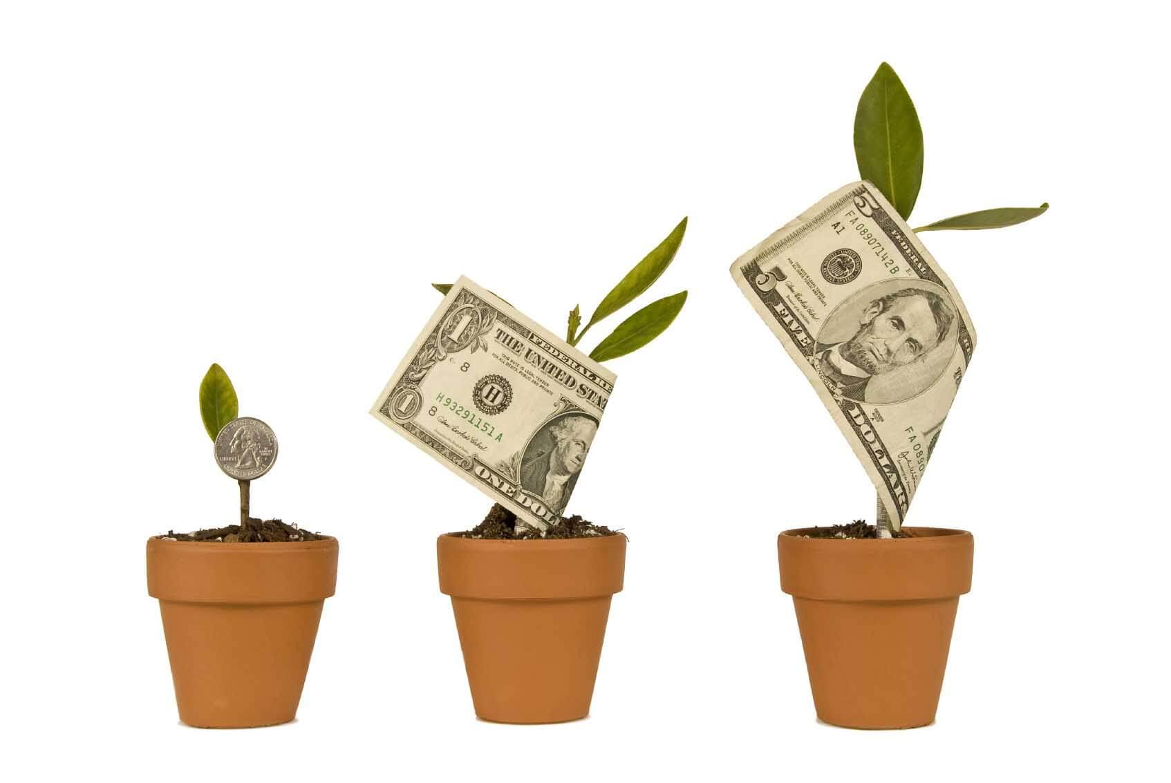 app development costs plants