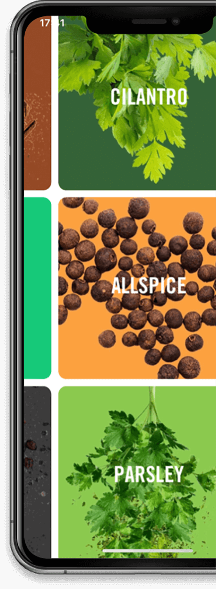 Spice categories in McCormick Flavor Maker app