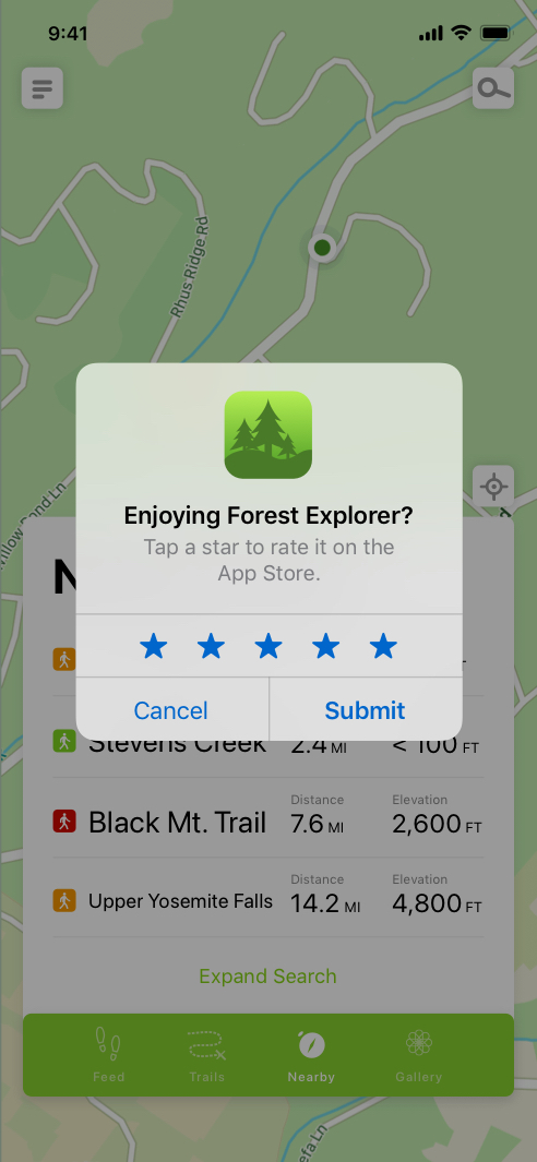iOS in-app review example