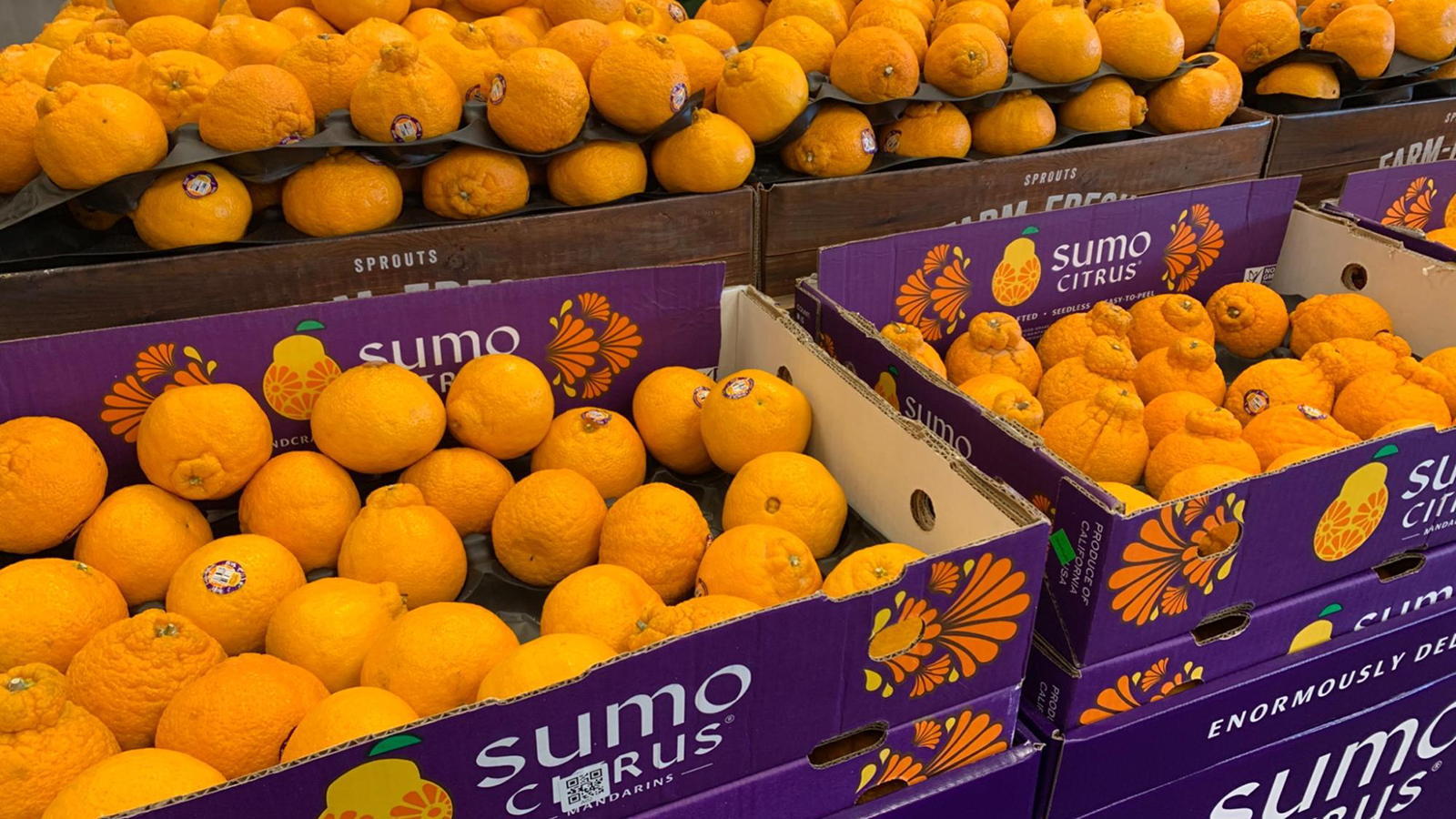 stacked boxes of lovable Sumo oranges